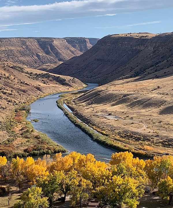 The Local Watering Hole - The Mighty Gunnison River  by Joel L. Evans